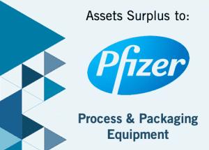 April 2019: Auction of Pfizer-Owned Surplus Process
